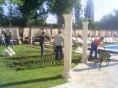 Amenajari Gradini - 10064 Amenajari Gradini