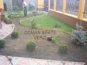 Amenajari Gradini - 10067 Amenajari Gradini