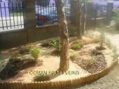 Aranjamente Plante Cu Piatra Scoarta Ornamentala - 10003 Aranjamente Plante Cu Piatra Scoarta Ornamentala