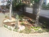 Aranjamente Plante Cu Piatra Scoarta Ornamentala - 10004 Aranjamente Plante Cu Piatra Scoarta Ornamentala