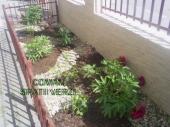 Aranjamente Plante Cu Piatra Scoarta Ornamentala - 10009 Aranjamente Plante Cu Piatra Scoarta Ornamentala