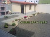 Aranjamente Plante Cu Piatra Scoarta Ornamentala - 10010 Aranjamente Plante Cu Piatra Scoarta Ornamentala