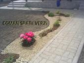 Aranjamente Plante Cu Piatra Scoarta Ornamentala - 10011 Aranjamente Plante Cu Piatra Scoarta Ornamentala