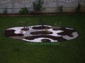 Aranjamente Plante Cu Piatra Scoarta Ornamentala - 10015 Aranjamente Plante Cu Piatra Scoarta Ornamentala