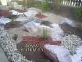 Aranjamente Plante Cu Piatra Scoarta Ornamentala - 10018 Aranjamente Plante Cu Piatra Scoarta Ornamentala
