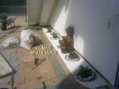 Aranjamente Plante Cu Piatra Scoarta Ornamentala - 10022 Aranjamente Plante Cu Piatra Scoarta Ornamentala
