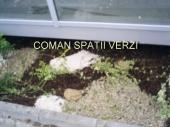Aranjamente Plante Cu Piatra Scoarta Ornamentala - 10030 Aranjamente Plante Cu Piatra Scoarta Ornamentala