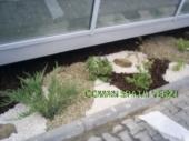 Aranjamente Plante Cu Piatra Scoarta Ornamentala - 10031 Aranjamente Plante Cu Piatra Scoarta Ornamentala