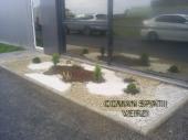 Aranjamente Plante Cu Piatra Scoarta Ornamentala - 10034 Aranjamente Plante Cu Piatra Scoarta Ornamentala