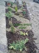 Aranjamente Plante Cu Piatra Scoarta Ornamentala - 10038 Aranjamente Plante Cu Piatra Scoarta Ornamentala