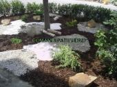 Aranjamente Plante Cu Piatra Scoarta Ornamentala - 10042 Aranjamente Plante Cu Piatra Scoarta Ornamentala