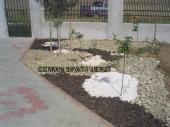 Aranjamente Plante Cu Piatra Scoarta Ornamentala - 10043 Aranjamente Plante Cu Piatra Scoarta Ornamentala