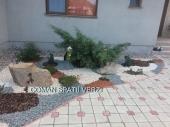 Aranjamente Plante Cu Piatra Scoarta Ornamentala - 10045 Aranjamente Plante Cu Piatra Scoarta Ornamentala