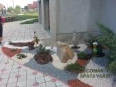 Aranjamente Plante Cu Piatra Scoarta Ornamentala - 10046 Aranjamente Plante Cu Piatra Scoarta Ornamentala