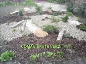 Aranjamente Plante Cu Piatra Scoarta Ornamentala - 10050 Aranjamente Plante Cu Piatra Scoarta Ornamentala