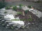 Aranjamente Plante Cu Piatra Scoarta Ornamentala - 10051 Aranjamente Plante Cu Piatra Scoarta Ornamentala