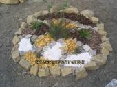 Aranjamente Plante Cu Piatra Scoarta Ornamentala - 10053 Aranjamente Plante Cu Piatra Scoarta Ornamentala