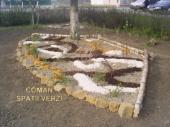 Aranjamente Plante Cu Piatra Scoarta Ornamentala - 10054 Aranjamente Plante Cu Piatra Scoarta Ornamentala