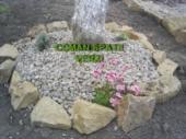Aranjamente Plante Cu Piatra Scoarta Ornamentala - 10055 Aranjamente Plante Cu Piatra Scoarta Ornamentala