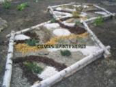 Aranjamente Plante Cu Piatra Scoarta Ornamentala - 10056 Aranjamente Plante Cu Piatra Scoarta Ornamentala