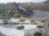 Aranjamente Plante Cu Piatra Scoarta Ornamentala - 10057 Aranjamente Plante Cu Piatra Scoarta Ornamentala