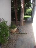 Aranjamente Plante Cu Piatra Scoarta Ornamentala - 10060 Aranjamente Plante Cu Piatra Scoarta Ornamentala