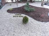 Aranjamente Plante Cu Piatra Scoarta Ornamentala - 10063 Aranjamente Plante Cu Piatra Scoarta Ornamentala