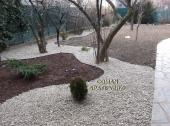 Aranjamente Plante Cu Piatra Scoarta Ornamentala - 10066 Aranjamente Plante Cu Piatra Scoarta Ornamentala