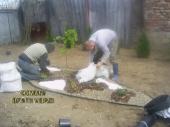 Aranjamente Plante Cu Piatra Scoarta Ornamentala - 10069 Aranjamente Plante Cu Piatra Scoarta Ornamentala