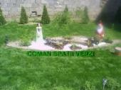 Aranjamente Plante Cu Piatra Scoarta Ornamentala - 10070 Aranjamente Plante Cu Piatra Scoarta Ornamentala