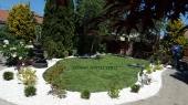 Aranjamente Plante Cu Piatra Scoarta Ornamentala - 10074 Aranjamente Plante Cu Piatra Scoarta Ornamentala
