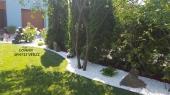 Aranjamente Plante Cu Piatra Scoarta Ornamentala - 10075 Aranjamente Plante Cu Piatra Scoarta Ornamentala