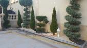 Aranjamente Plante Cu Piatra Scoarta Ornamentala - 10079 Aranjamente Plante Cu Piatra Scoarta Ornamentala