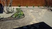 Aranjamente Plante Cu Piatra Scoarta Ornamentala - 10084 Aranjamente Plante Cu Piatra Scoarta Ornamentala