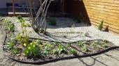 Aranjamente Plante Cu Piatra Scoarta Ornamentala - 10085 Aranjamente Plante Cu Piatra Scoarta Ornamentala